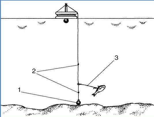 сделать кружки для ловли на живца