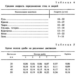strelba_drobyu2