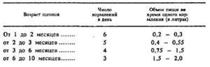 virashivaniye_shenkov3